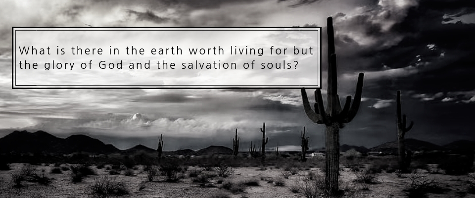 What is there in the earth worth living for but the glory of God and the salvation of souls?